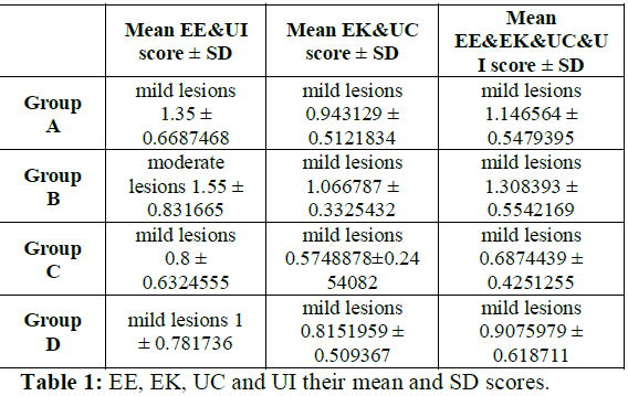 Mean and Sd scores of EE, EK, UC and UI