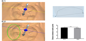 Three-dimensional preview and two-dimensional measurement diagram of group E. ***P<0.001.