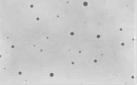TEM showing nano pomegranate emulsion with spherical shape with average size of 50 nanometer at magnification of 20000x.