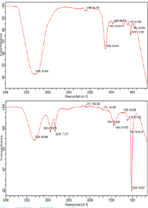 FTIR spectra of (A) pure (B) extracted