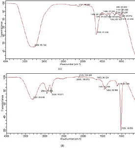 FTIR spectra of (A) pure and (B)