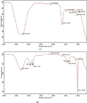 FTIR spectra of (A) pure and (B) extracted
