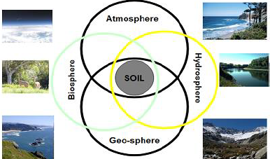 Graphic representation of Soil