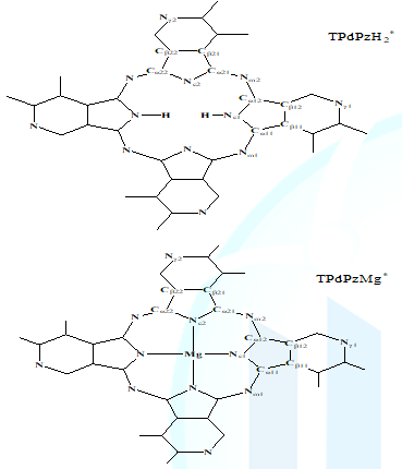 Atom symbols of TPdPzH2* and TPdPzMg*.