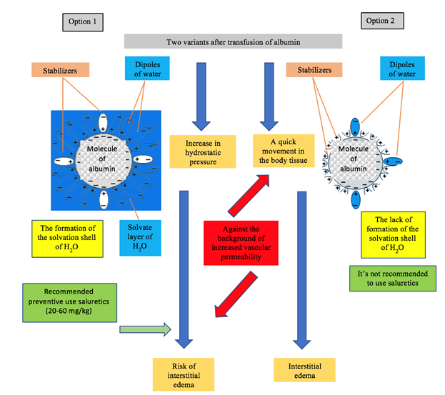 Figure 3: The scheme action of the two options of commercial albumin.
