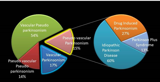 Group of patients at high risk for Parkinsonism TQ ≥ 4, total sample of 46 participants. Different phenotypes were found in this group: vascular, parkinsonian, both or none accordingly.