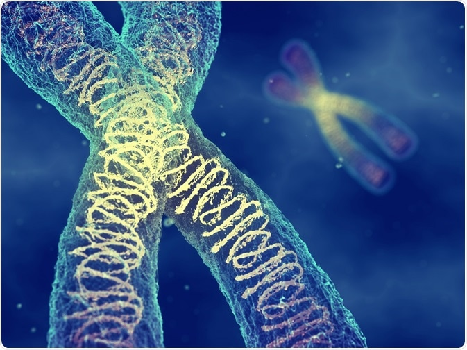 This image is related to DNA repair