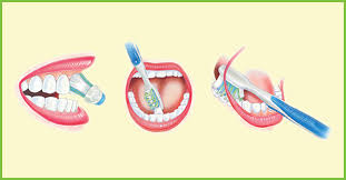 Image of Oral Hygiene   Source-Wikipedia