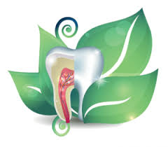Image of Holistic Dentistry  Source-Wikipedia