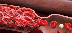 Image showing the blood flow