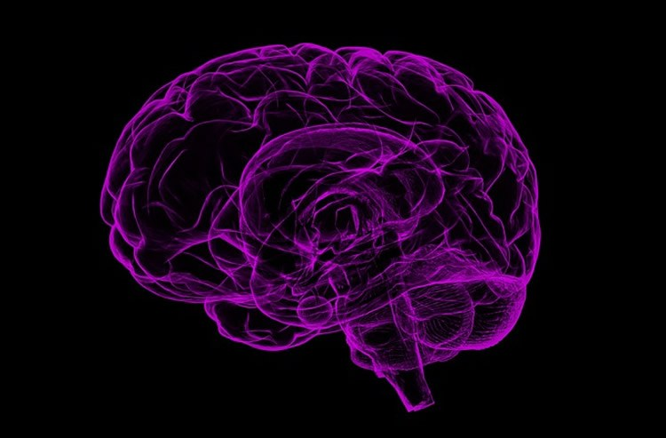 This image is related to HIV-associated neurocognitive disorder- Source Wikipedia