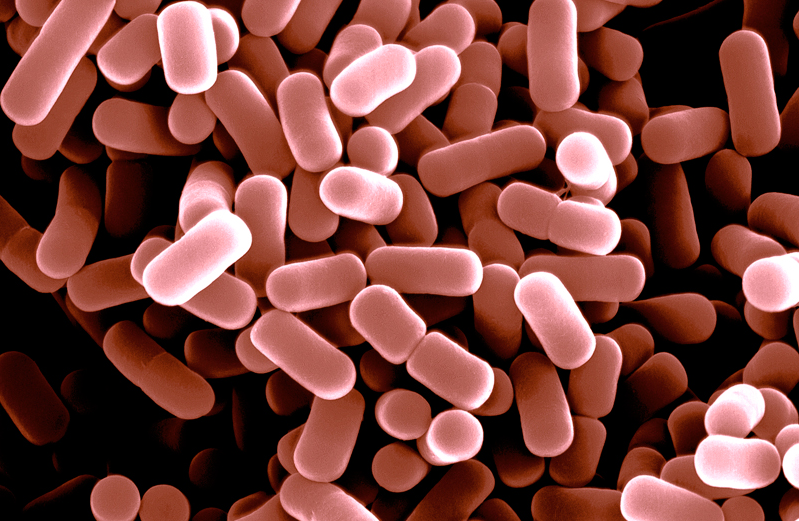 This is the image which is related to microencapsulation