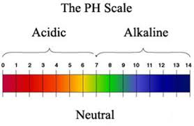 This is the image related to pH value Source - Wikipedia
