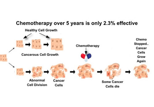 Image explains about Chemotherapy