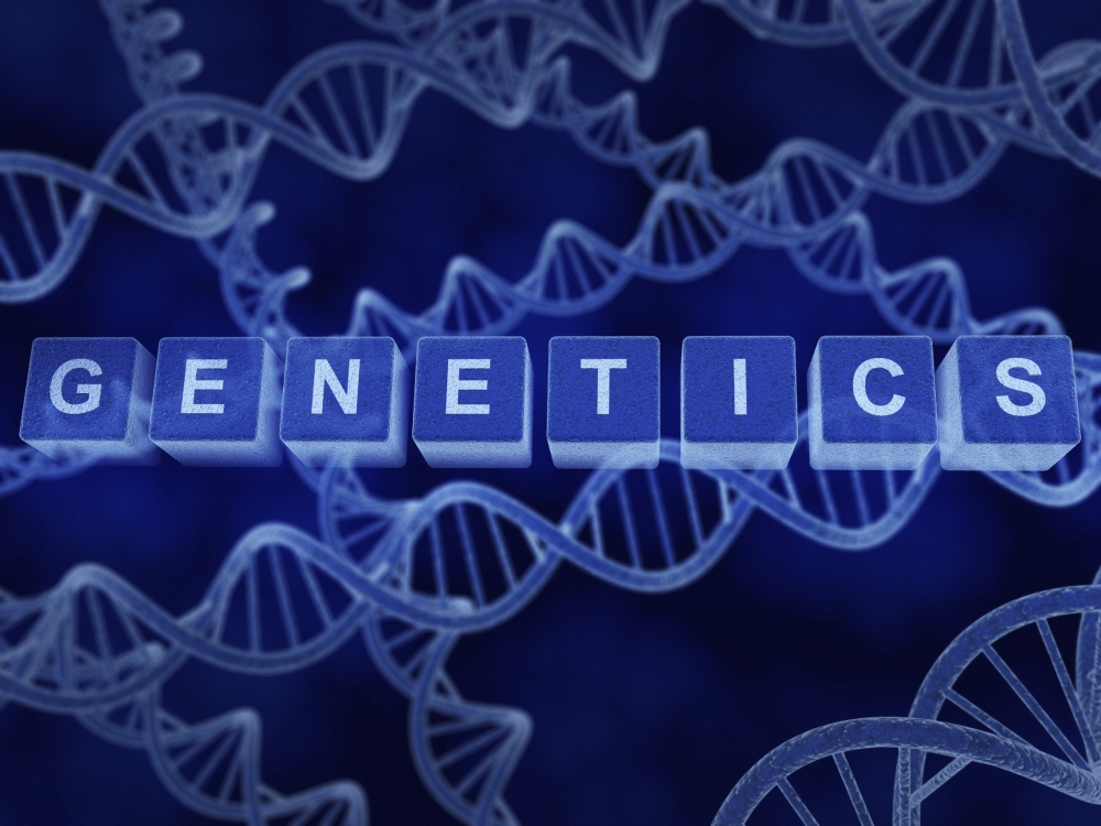 Image showing the Logo of genetics with DNA
